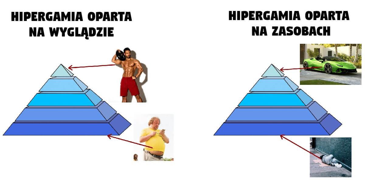 HIPERGAMIA - oparta o wygląd i zasoby